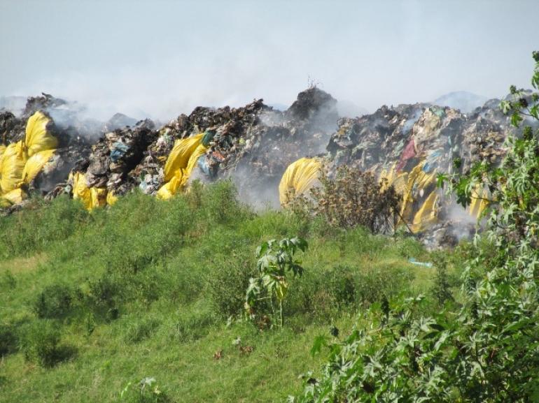 Novo secret�rio do meio ambiente promete para logo a retomada da coleta seletiva de lixo no munic�pio