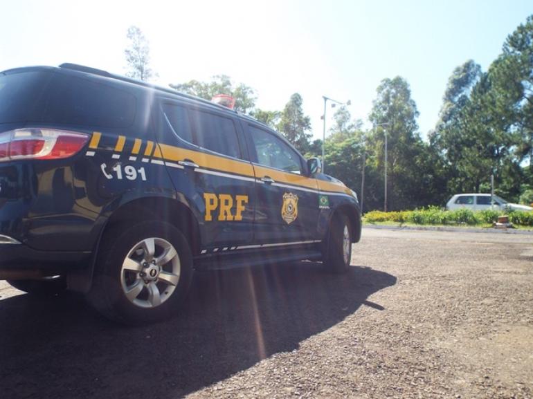 PRF alerta sobre aumento de animais na pista