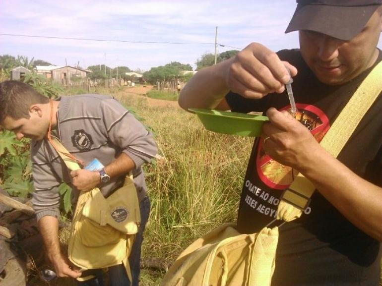 Resultados de exames para confirma��o de novos focos do Aedes aegypti s�o esperados em S�o Borja