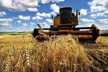 Governo reduz ICMS do trigo para todo o país