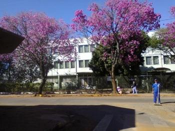 Estudante fica ferido após briga em escola