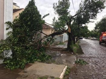 Prejuízos do temporal ainda estão sendo calculados
