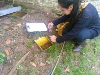 Centro Estadual de Vigilância e Saúde vai realizar evento sobre o Aedes Aegypti em São Borja
