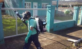 São Borja é uma das cidades com problemas graves em relação ao Aedes aegypti no estado
