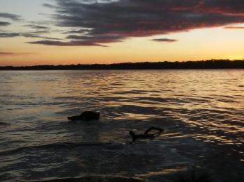 Homem desaparece nas águas do Rio Uruguai